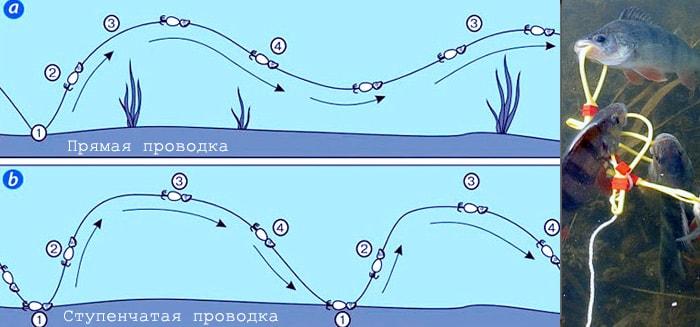 Способы проводки на окуня