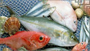 Группа разных рыб